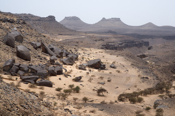 Seasonal bed of an ancient river located in the Mauritanian desert a few kilometers from the city of Atar, capital of the region of Adrar.